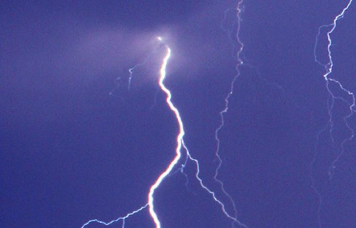 Elektrische Schockbehandlung von Nahrungsmitteln