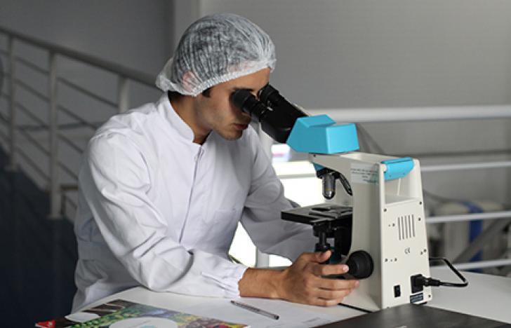Innovation und Forschung stärken regionale Standorte